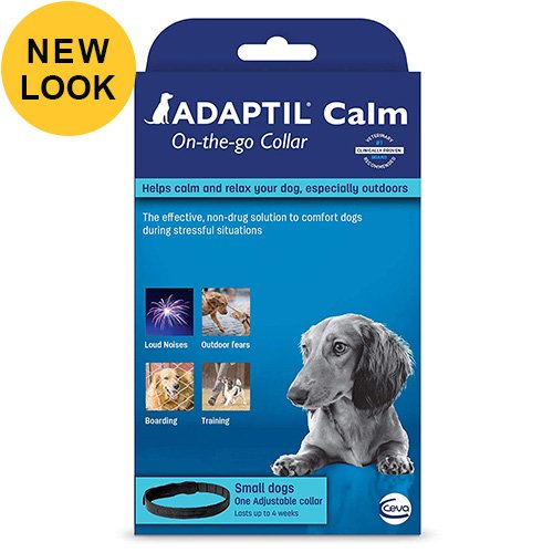 accessories/Adaptil-Collar-For-Small-dogs-lasts-up-to-4-week.jpg