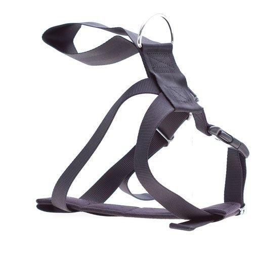 accessories/Car-Harness.jpg