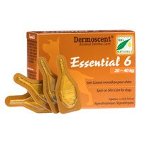 Essential-6-for-Large-Dogs-20-40kg.jpg